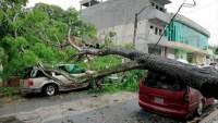 Tormenta tropical Cristóbal provoca inundaciones y deslaves en cinco estados de México