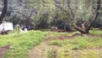 Campesinos y ganaderos de Peribán lanzan amenaza a productores de aguacate que utilizan cañones antigranizo