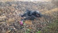 Hallan cadáver calcinado y decapitado en una brecha en León, Guanajuato