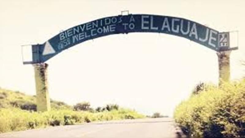 Con más de una docena de camiones, saquean huertas de limón en El Aguaje, Aguililla