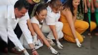 Lázaro Cárdenas, Michoacán: Expo Tortuga Marina 2020 será virtual debido a la contingencia