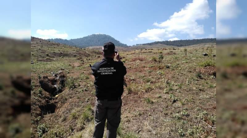 """Manos """"criminales"""" devastan predios en Tzintzuntzan, Michoacán"""