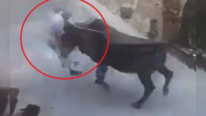 Toro de 400 kilos mata a un hombre en España