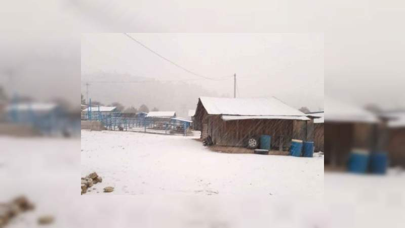 Norte del país es azotado por frente frío provoca nevadas en 3 estados