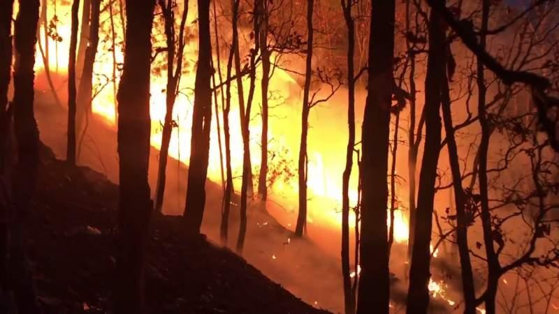 Brigadistas combaten incendios por aire y tierra en Áporo, Senguio, Los Reyes y Tangancícuaro