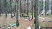 Localizan campamento relacionado en actividades ilícitas en Zinapécuaro, Michoacán