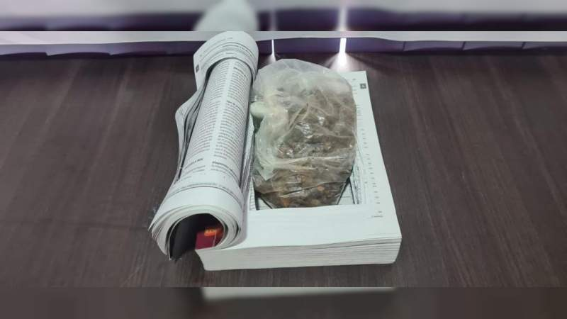 Asegura la GN en Morelia, Michoacán heroína oculta en un libro