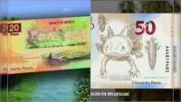 Anuncia Banxico los nuevos billetes de 20 y 50 pesos, adiós a Juárez y Morelos