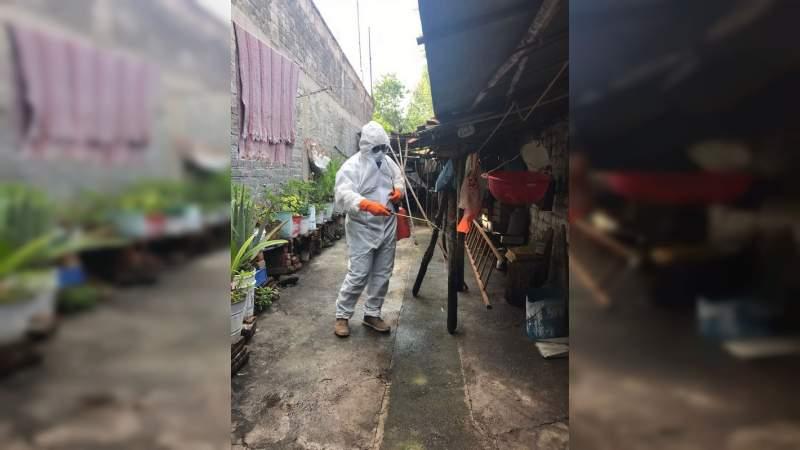 Llevan a cabo tareas de sanitización y fumigación en Cuamio, Michoacán