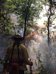 Fotografías del fuerte incendio en el cerro de  la Cruz en Uruapan