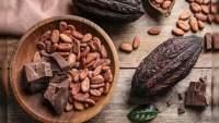 Científicos aseguran que se acerca el fin del chocolate
