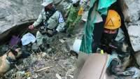 Caninos encuentran dos cuerpos tras el deslave del Cerro del Chiquihuite