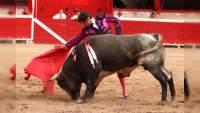 Póker de toreros morelianos en competencia, en Lagunillas