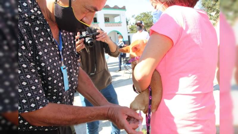 Inicia campaña de vacunación antirrábica en San Felipe de los Alzati, municipio de Zitácuaro