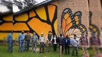 Dan mantenimiento a Santuarios de la Mariposa Monarca