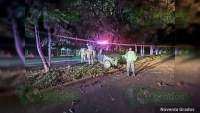 Trágico choque de un auto contra un árbol en Zamora, Michoacán hubo un muerto y un herido