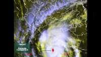 Fuertes vientos provocan caída de árbol al interior de Hospital en Lázaro Cárdenas