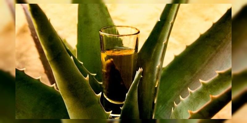 Interesa a Corea importar mezcal y aguacate michoacano: Sedrua