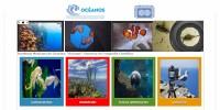 Nicolaitas de nivel superior podrán participar en Concurso de Fotografía Científica