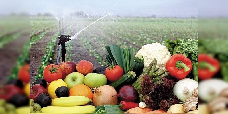 Productos de calidad del campo michoacano, a la Kermés del DIF: Sedrua