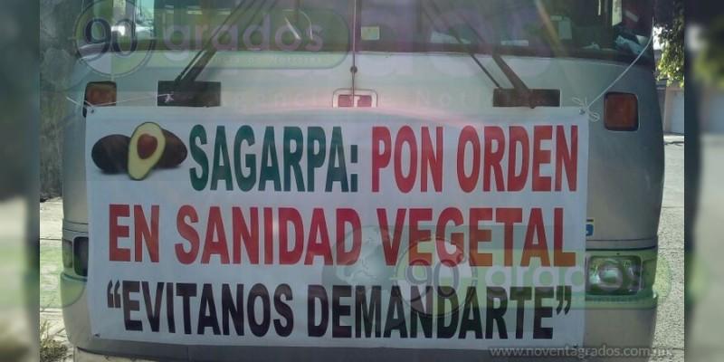 Productores aguacateros de Uruapan amenazan con tomar SAGARPA