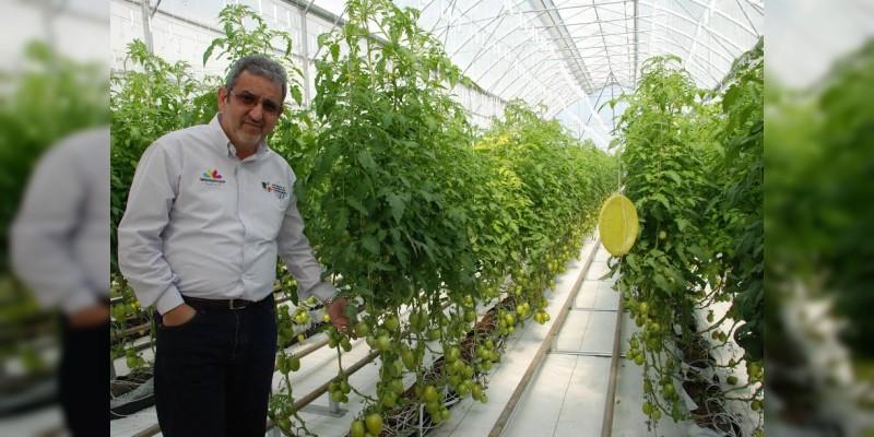 Optimiza Sedrua programas para el campo michoacano