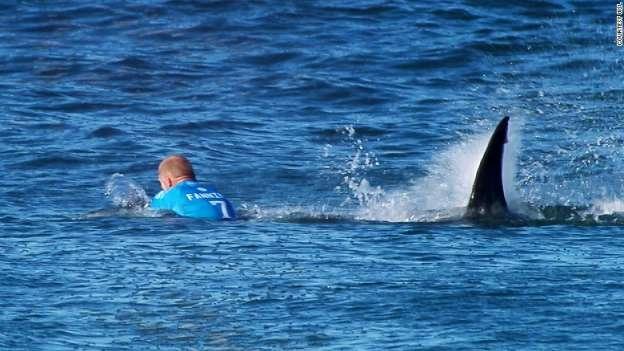#VIDEO Tiburón ataca a surfista profesional en pleno evento, en Sudáfrica