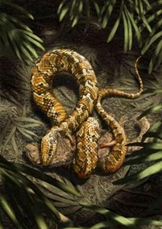 Serpientes primitivas tenían patas y vivían en madrigueras