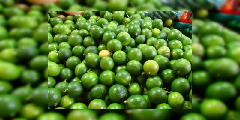 A 6.50, 7 y 8 pesos se vende el kilo de limón del Valle de Apatzingán