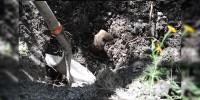 Encuentran 75 fosas clandestinas en Baja California, fueron utilizadas por el narco