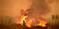 Evacuan 230 mil personas por incendios en Los Ángeles