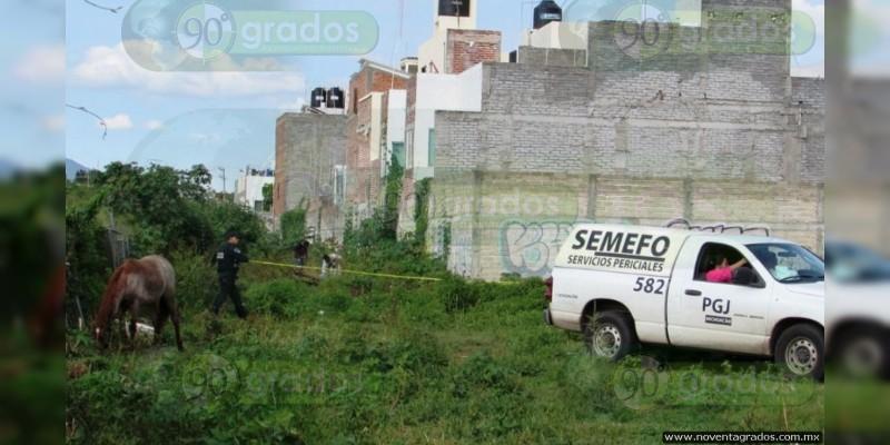 Hallan a cuatro ejecutados dentro de coches en la México - Tuxpan