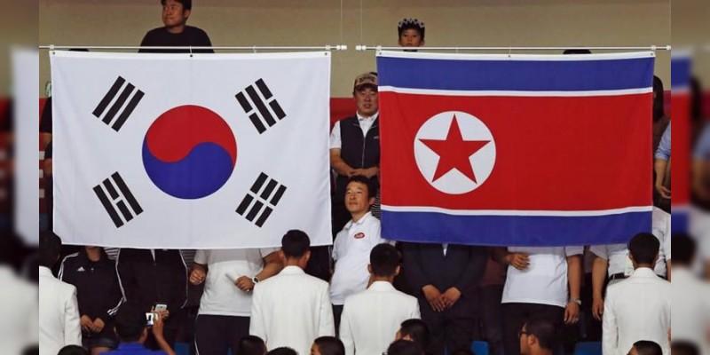 Después de 60 años, un avión norcoreano aterrizó en Corea del Sur