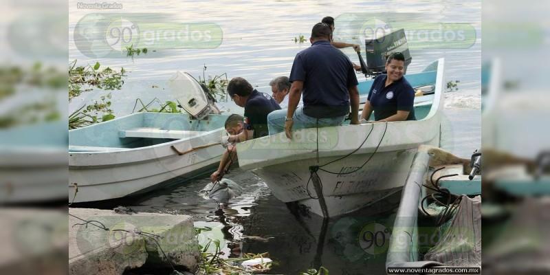 Pescadores hallan tres cadáveres en río en Veracruz