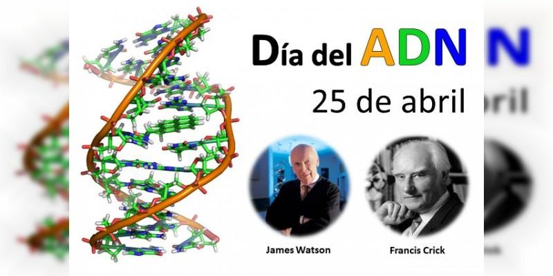 Hoy 25 de abril es el Día Internacional del ADN