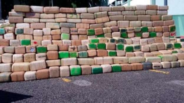 Aseguran más de 23 toneladas de marihuana en Sinaloa
