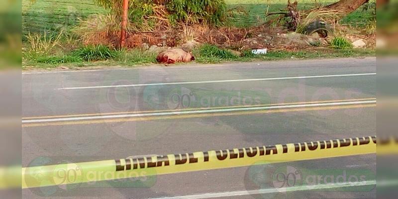 Localizan restos humanos tirados junto a avenida en Celaya, Guanajuato