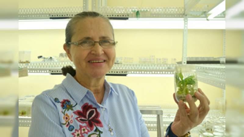 Científicas mexicanas trabajan para mejorar el plátano y el achiote