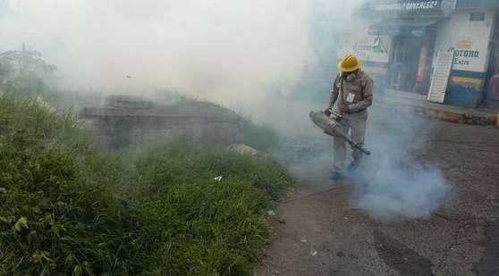 Coordinación entre autoridades de los tres niveles permitirá disminuir dengue y Chikungunya