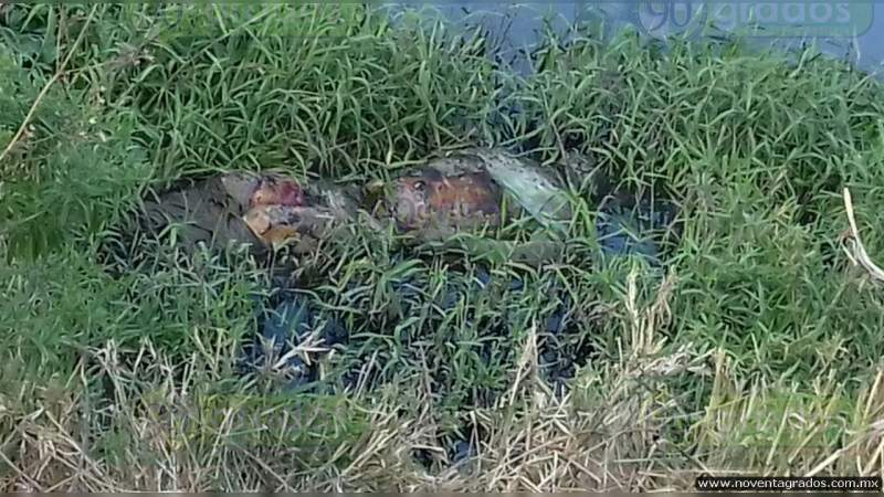 Hallan cadáver putrefacto en Coyuca de Benítez, Guerrero