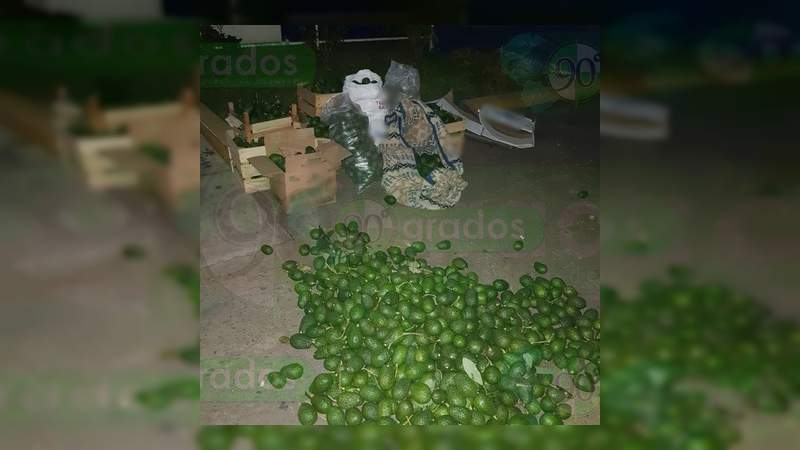 Caen siete ladrones de aguacate con arma, un auto blindado y droga, en Uruapan