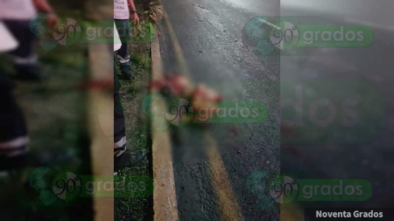 Muere atropellado un menor sobre la carretera Panamericana en Guanajuato