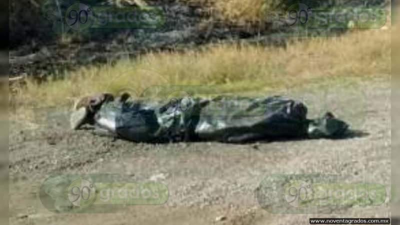 Dejan a descuartizado en bolsas y con narcomensaje sobre la Salvatierra - Yuriria, en Guanajuato