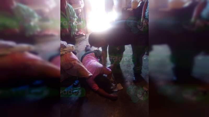Enjambre ataca a una mujer y un menor en Zitácuaro