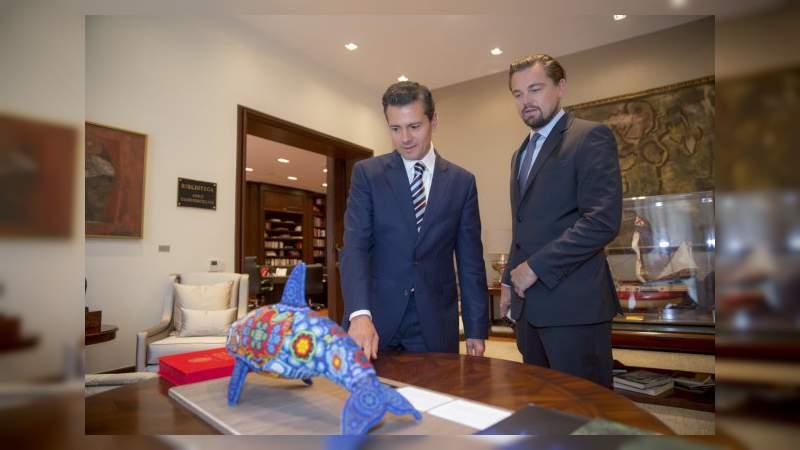 Leonardo Dicaprio lanzará un documental a favor de la vaquita marina