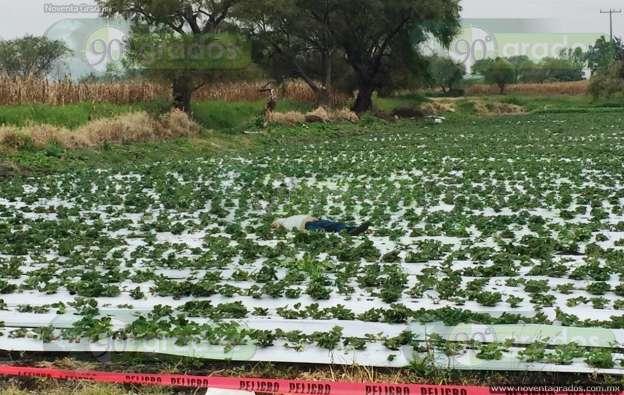 Hallan a persona ejecutada en un cultivo en Zamora