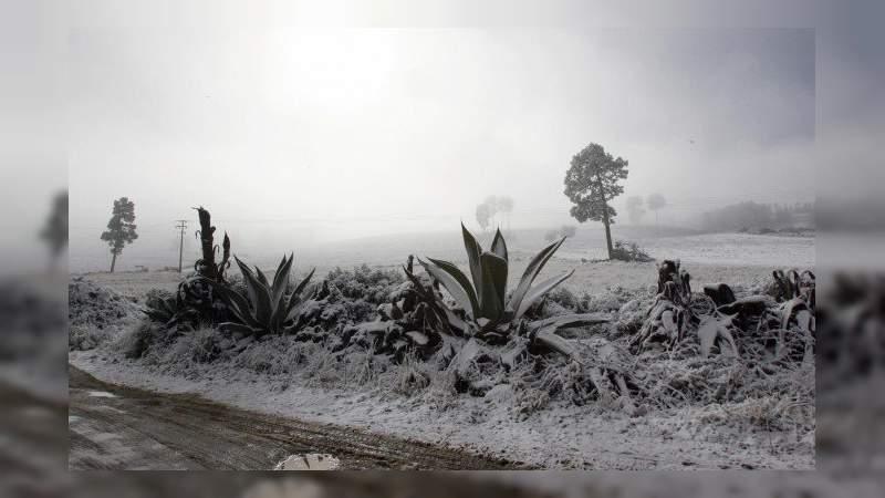 Más de 400 mil empleos agrícolas perdidos por heladas en Sonora