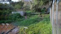 Colonia Joyas de Cuinio, exige culminación de obra de agua potable a COMAPA