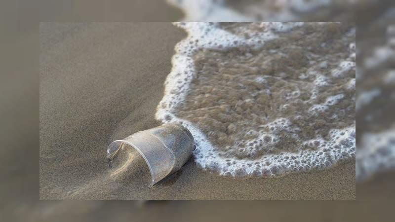 Estudio revela que la contaminación plástica afecta a las bacterias que nos ayudan a respirar