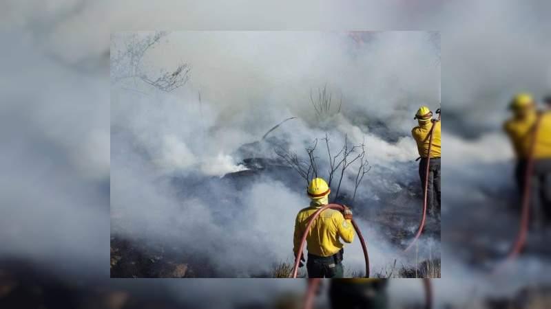 Se han registrado más de 4 mil incendios forestales en 30 estados de México